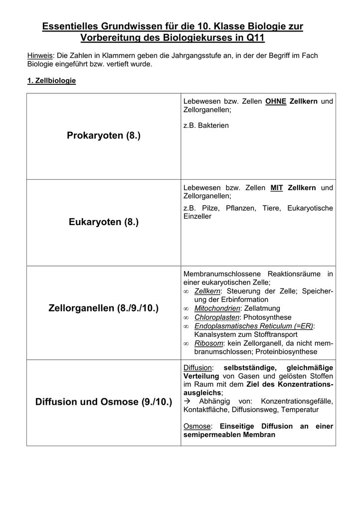 PDF-Download - Helene Lange Gymnasium Fürth