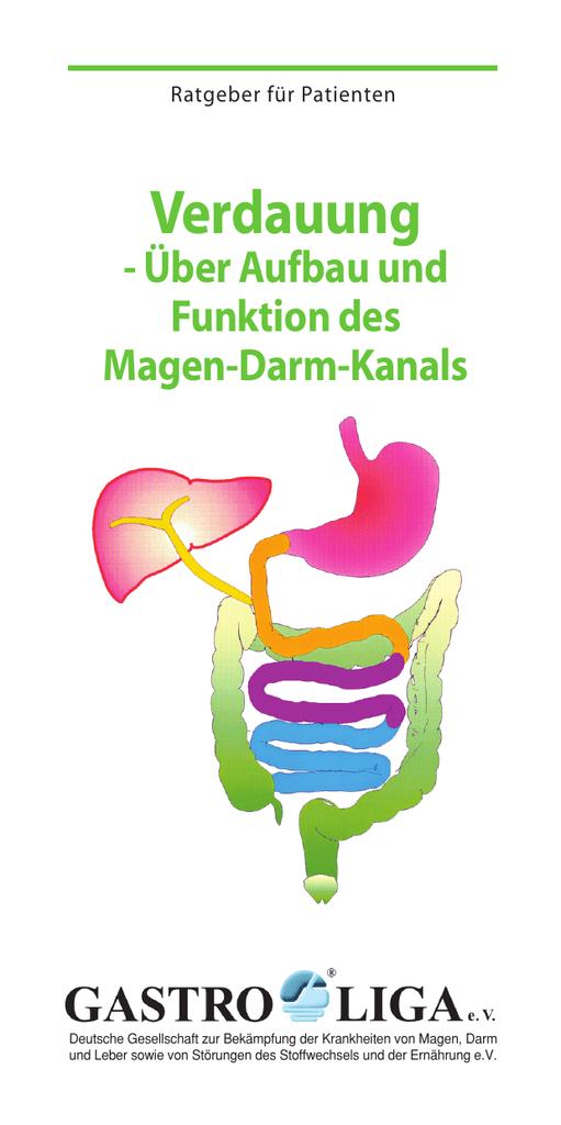 Großartig Dickdarm Funktion Im Verdauungssystem Zeitgenössisch ...