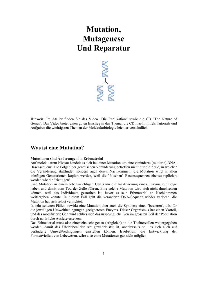 Mutation, Mutagenese Und Reparatur
