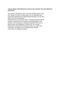 Arbeitsblatt: Die Evolution von HA/NS (Jahrgangsstufe 10 –12)