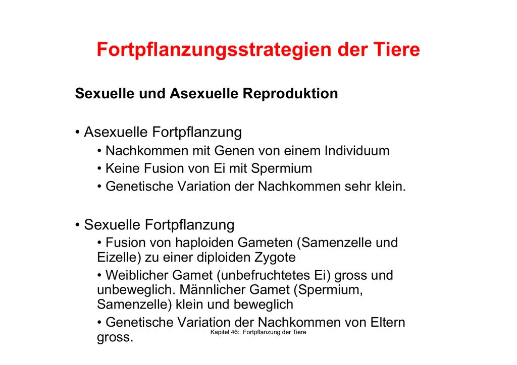 Wunderbar Weiblicher Fortpflanzungszyklus Galerie - Menschliche ...
