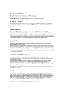 Die chromosomale Basis der Vererbung