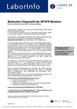 Molekulare Diagnostik der MTHFR-Mutation