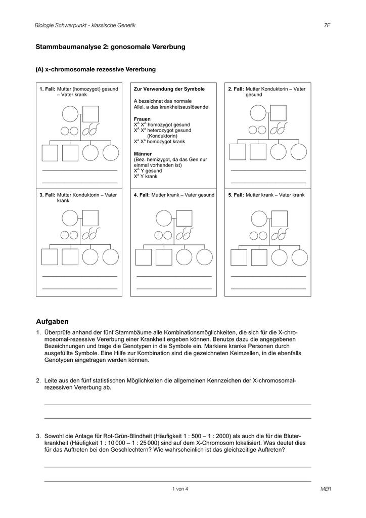 Übung 2 gonosomal - Biologie und Chemie TSME