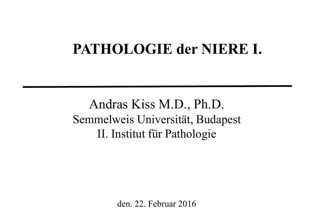 Groß Fisch Niere Anatomie Fotos - Anatomie und Physiologie des ...