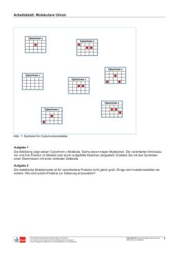 Stoffverteilungsplan PRISMA Chemie 1 Arbeitsbuch