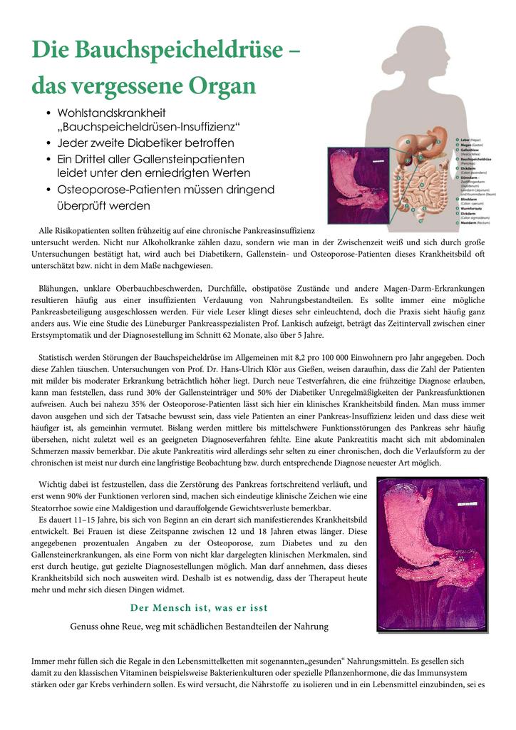 Die Bauchspeicheldrüse Medi
