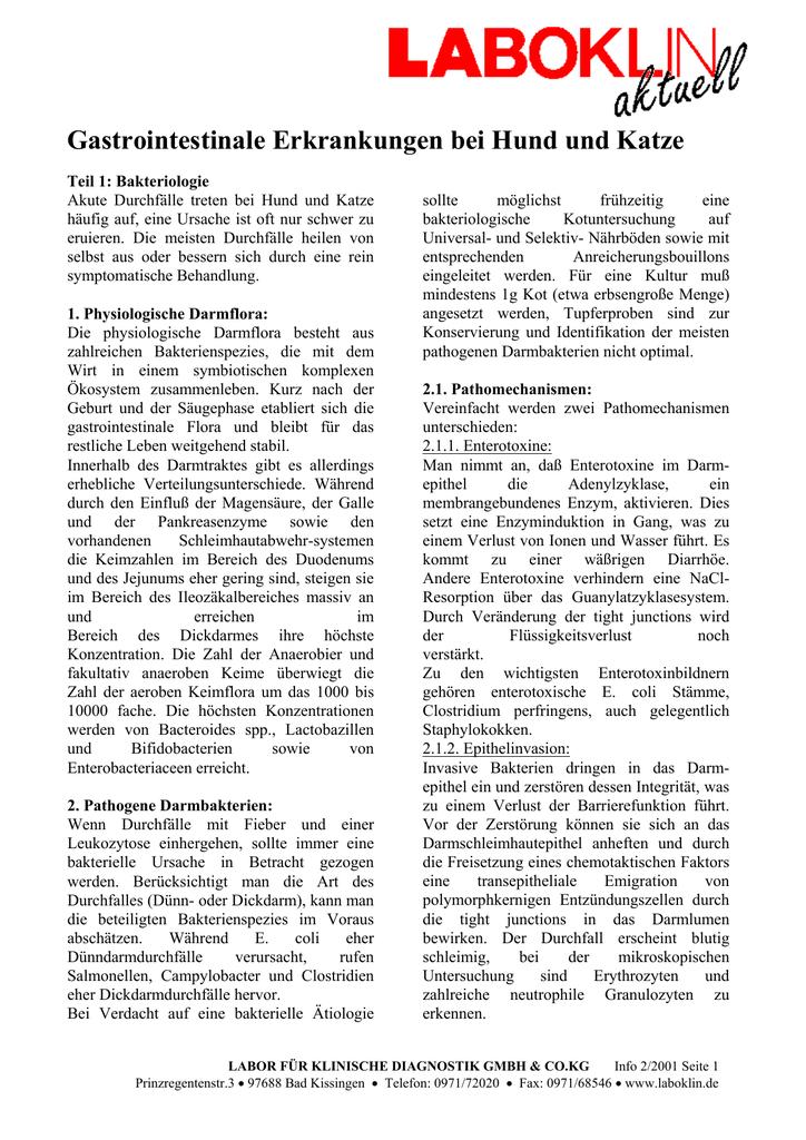 pathogene darmbakterien