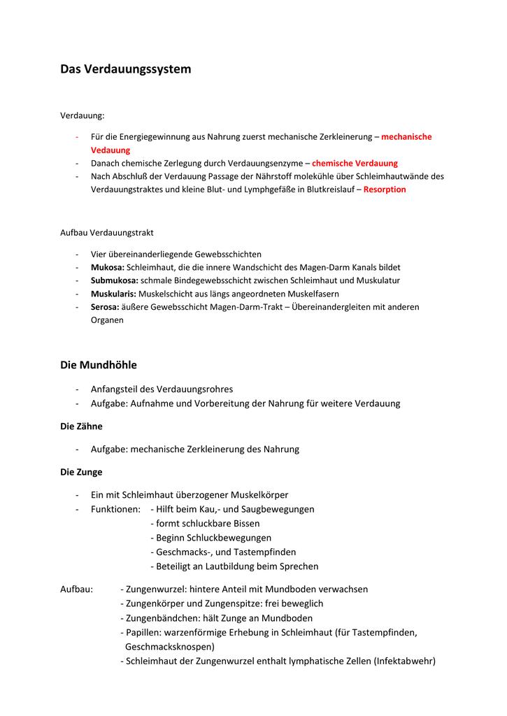 mechanischer ileus symptome