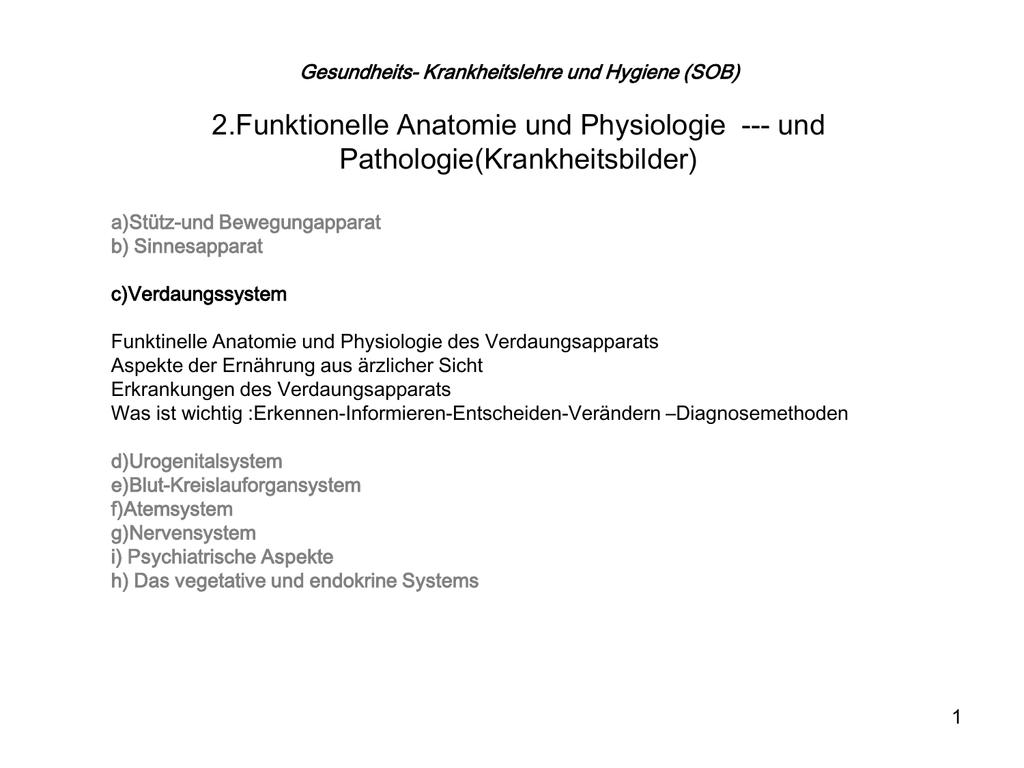 SOB 06_Kapitel 2.c - Verdauungssystem
