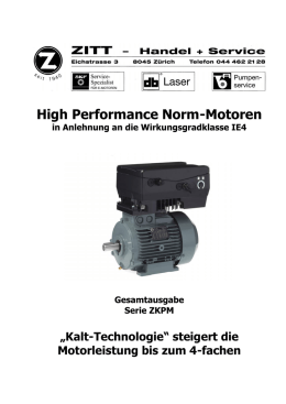 High Performance Norm-Motoren - ZITT