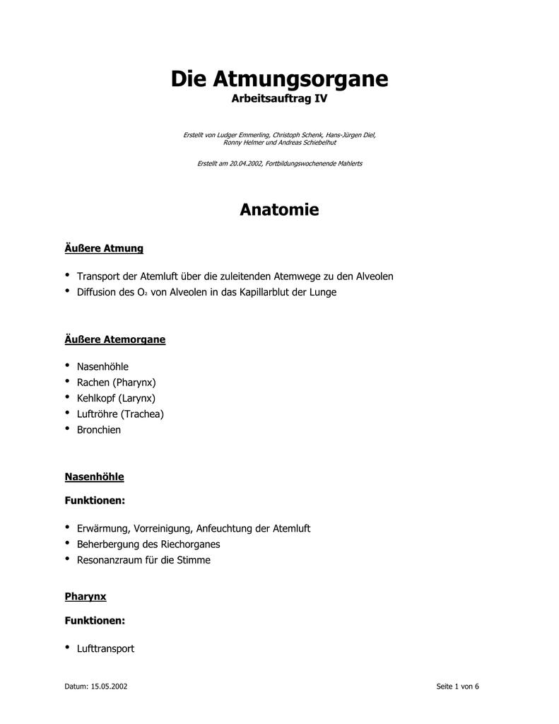 Niedlich Funktion Des Rachens Galerie - Physiologie Von Menschlichen ...