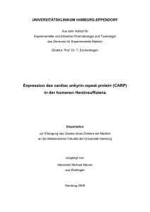 Expression des cardiac ankyrin repeat protein (CARP) in der