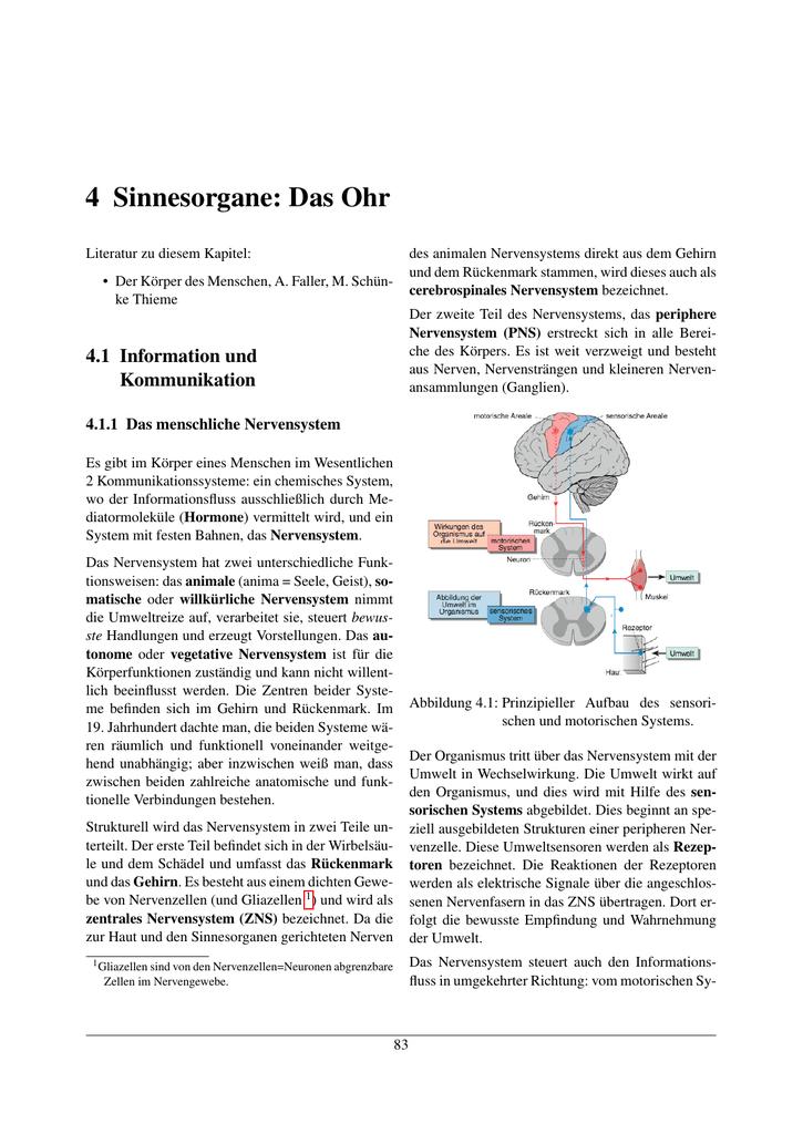 Berühmt Energie In Einer Zelle Arbeitsblatt Kapitel 9 Zeitgenössisch ...
