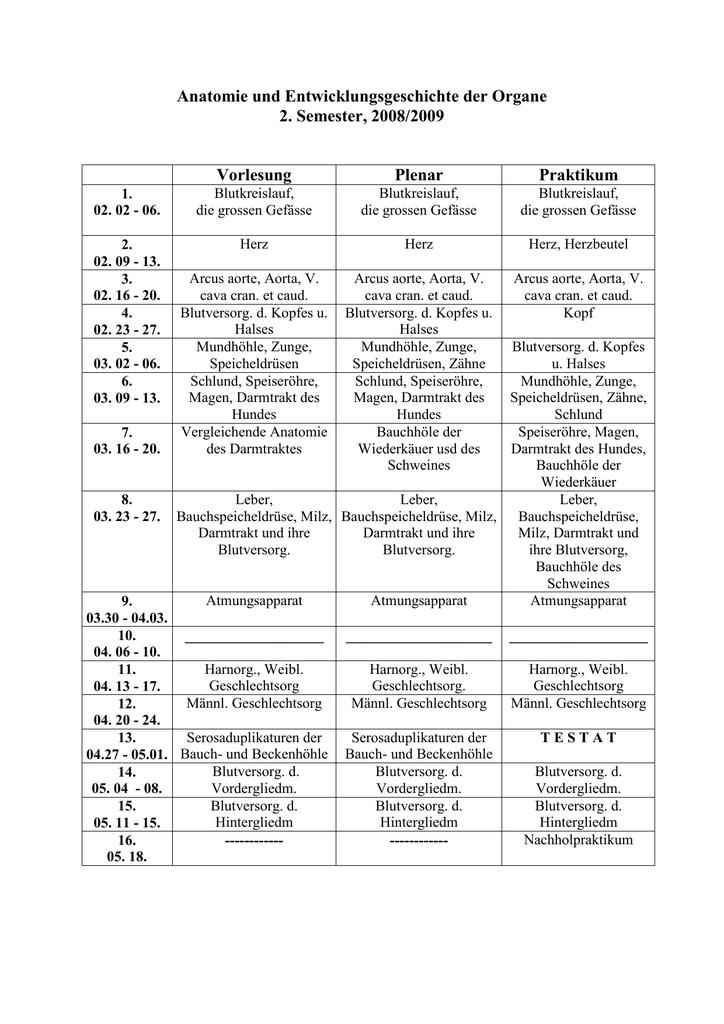 Anatomie und Entwicklungsgeschichte der Organe 2. Semester