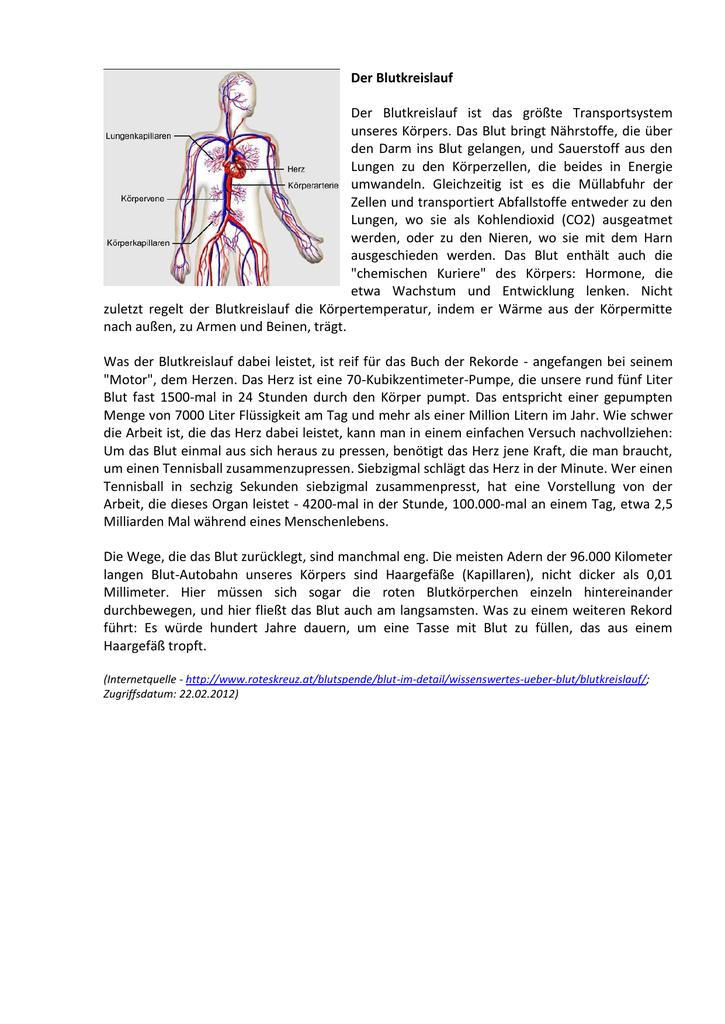 Der Blutkreislauf Der Blutkreislauf ist das größte Transportsystem