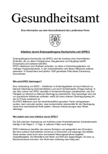 Infektion durch Enteropathogene Escherichia coli
