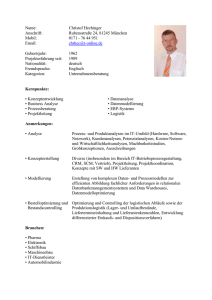 IT-Profil als DOC