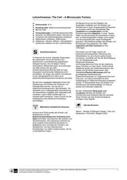 Cell_Lehrerhinweise (application/msword 49.0 KB)