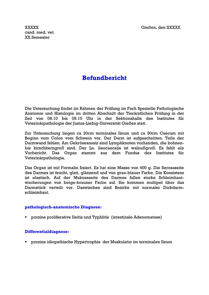 Nett Kreis Von Willis Anatomie Zeitgenössisch - Menschliche Anatomie ...