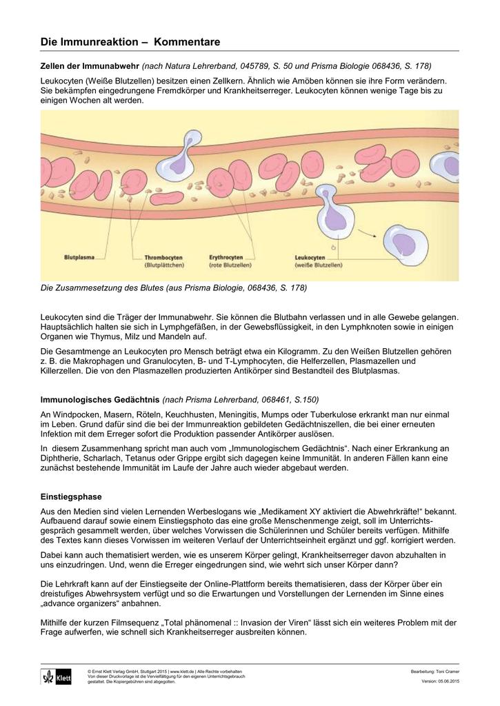 abwehrsystem des körpers biologie