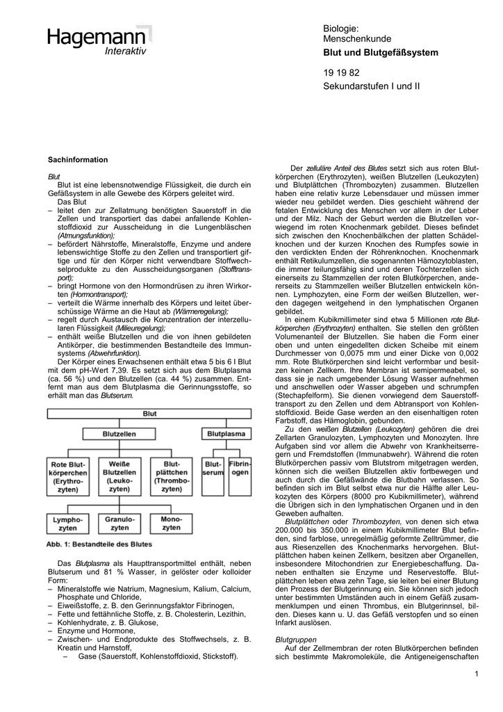 Interaktiv Biologie: Menschenkunde Blut und Blutgefäßsystem 19 19