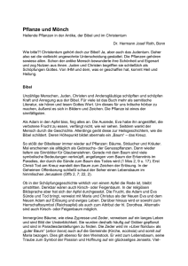 2001 Studium & Wissen Fachbücher & Lernen 2019 Mode Mittelenglische Mentale Verben Semantische Beschreibung Des Wortfeldes ..