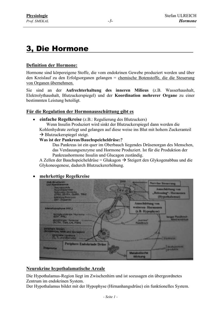 Die Hormone - Schmelzweb