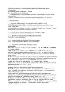 4.2 Dissimilation (Glykolyse bis Atmungskette)