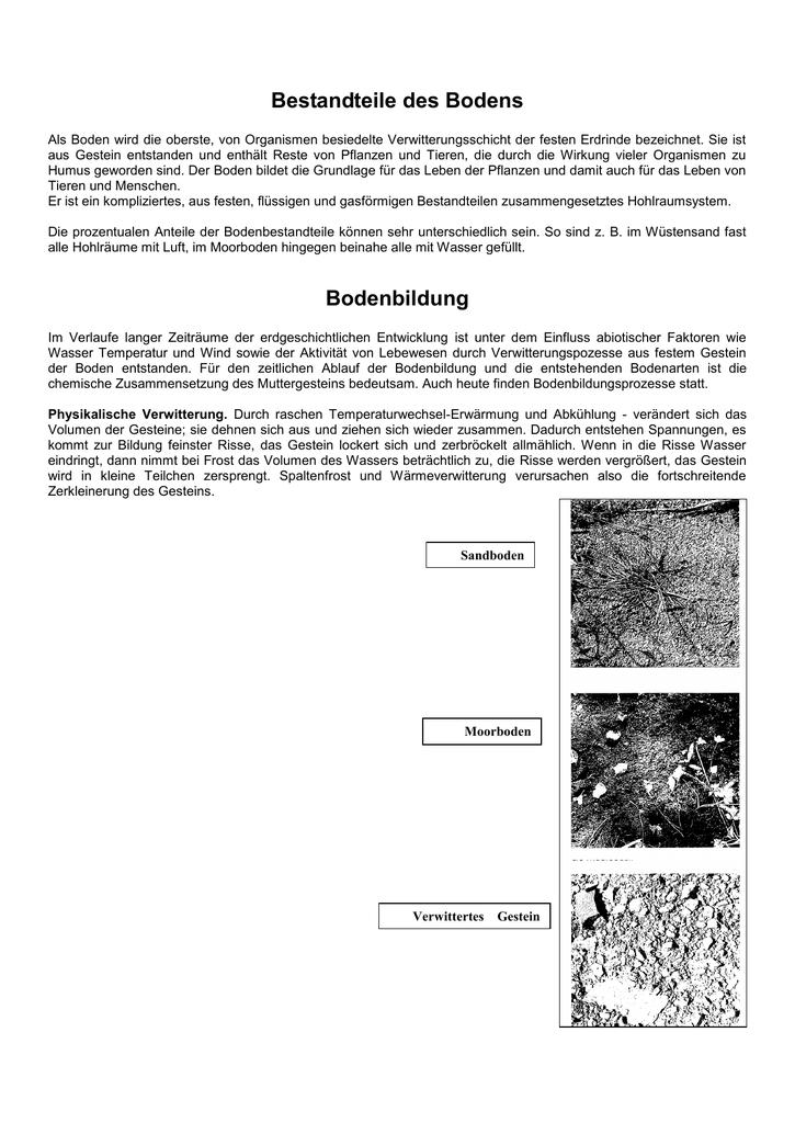 Berühmt Metamorphes Gestein Arbeitsblatt Ideen - Arbeitsblätter für ...