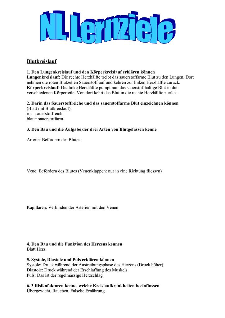 Beste Funktion Von Arterien Galerie - Anatomie Ideen - finotti.info