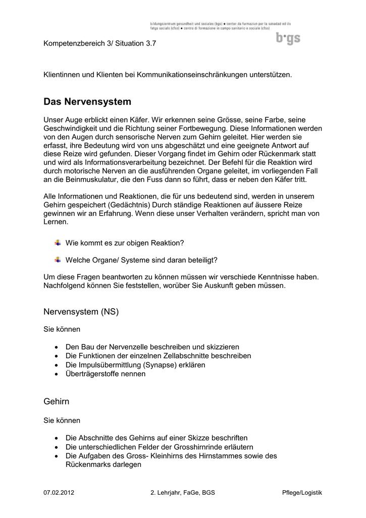 Fein Katzen Anatomie Und Physiologie Galerie - Anatomie Ideen ...