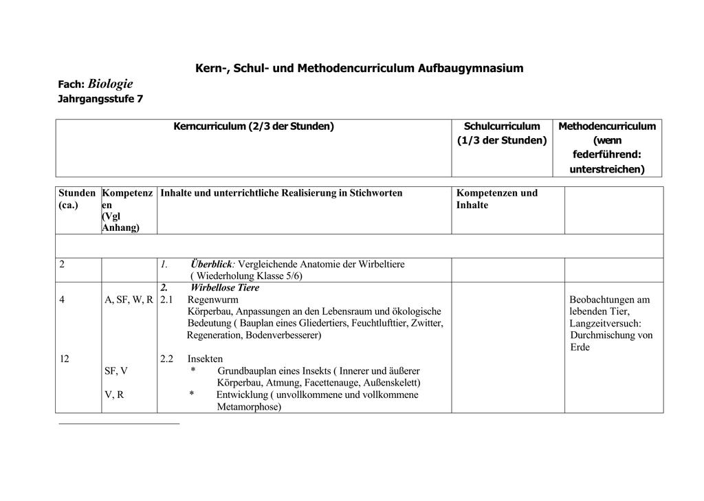 Erfreut Regenwurm Innere Anatomie Zeitgenössisch - Anatomie Ideen ...