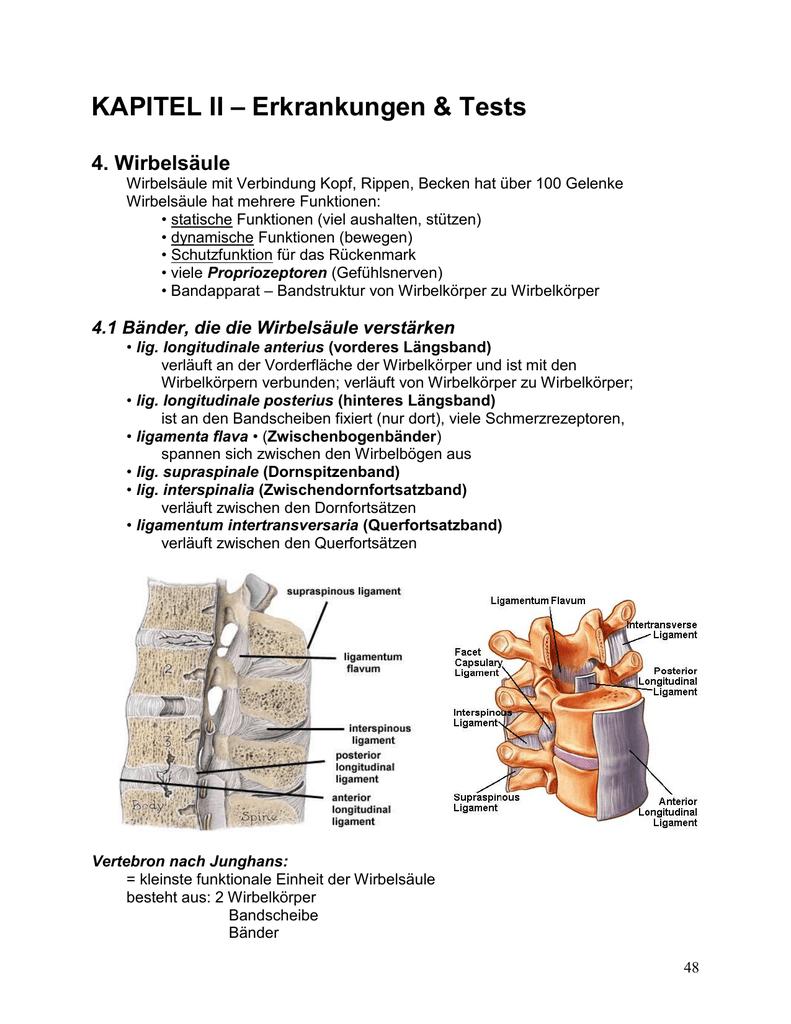KAPITEL II – Erkrankungen & Tests