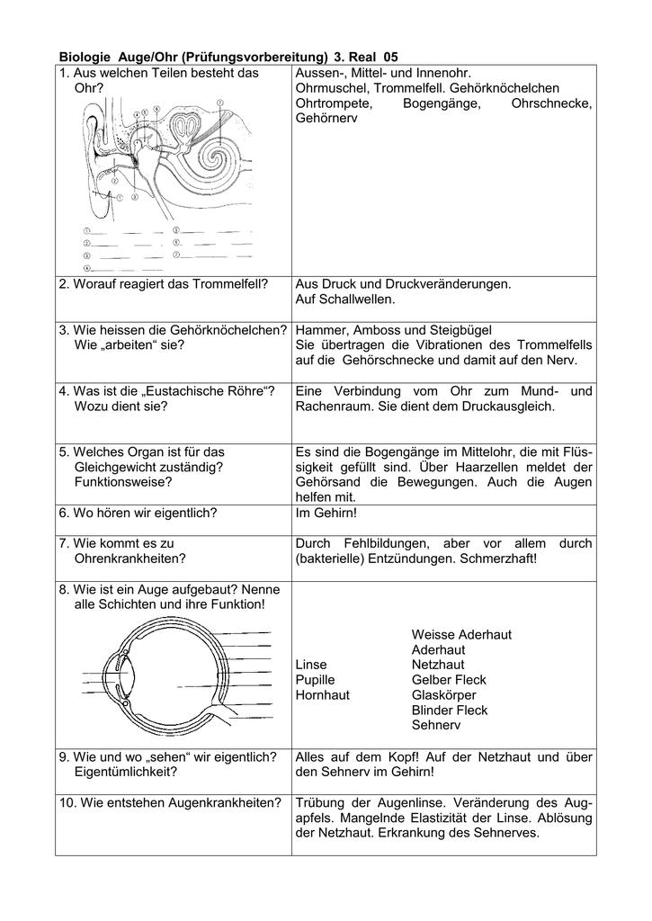 Bio_Auge-Ohr