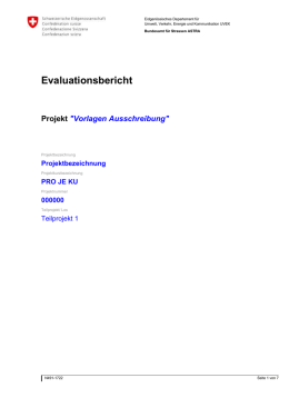 Evaluationsbericht