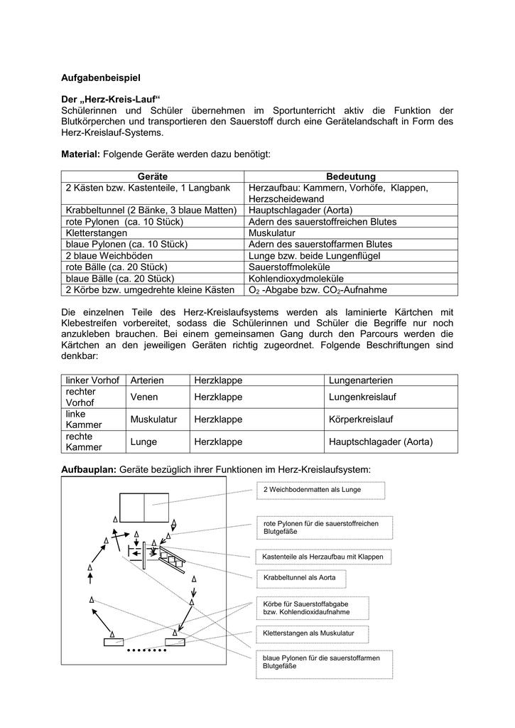 Stofftransport durch das Herz-Kreislauf-System
