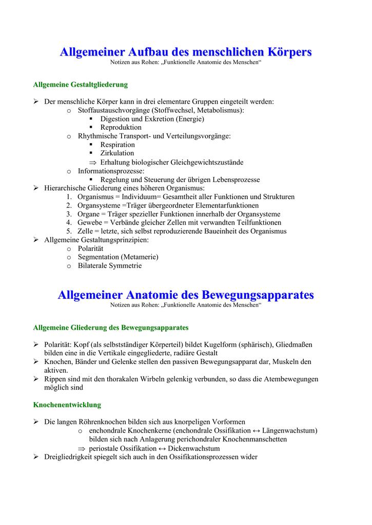 Niedlich Funktionelle Anatomie Des Menschen Zeitgenössisch ...