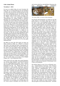 Little Animal Home Newsletter 1 / 2011 So nun ist er endlich fertig