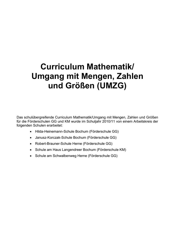 des Mathematik-Curriculums