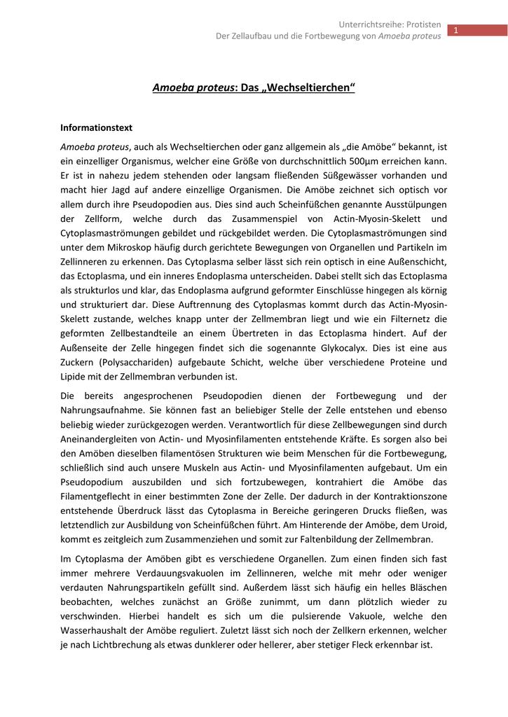 Berühmt Protisten Arbeitsblatt Galerie - Mathe Arbeitsblatt ...