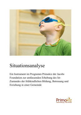 Situationsanalyse (Word, 45 Seiten, 3.11 MB)