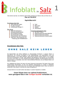 File - Offizielle INFOBLÄTTER Homepage