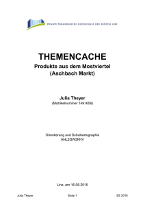 Theyer_Themencache_A3