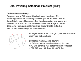 Traveling Salesman Problem (TSP)