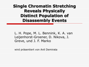 Single Chromatin Streching Reveals Physically Distrinct