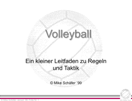 Volleyball - Mike Schäfer, Homepage