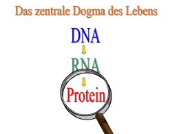 Genetik begreifbar machen