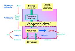atp gewinnung glykolyse