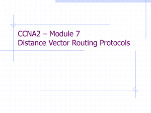 Distance Vector Routing Protocols
